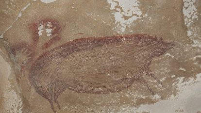Some pig: oldest rock art found to date points to more discoveries