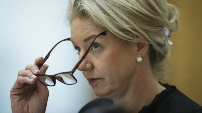Bridget McKenzie set for fresh scrutiny over $100 million 'slush fund' role