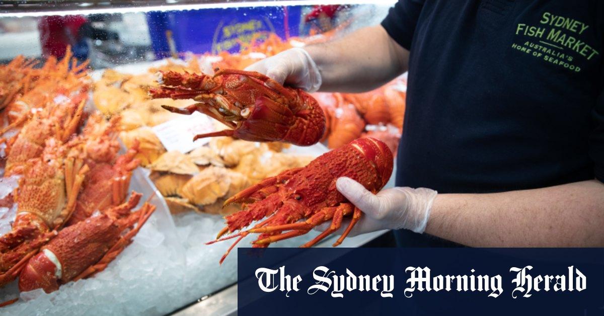Image 'National security risk': Australian lobster smuggling rocks Hong Kong