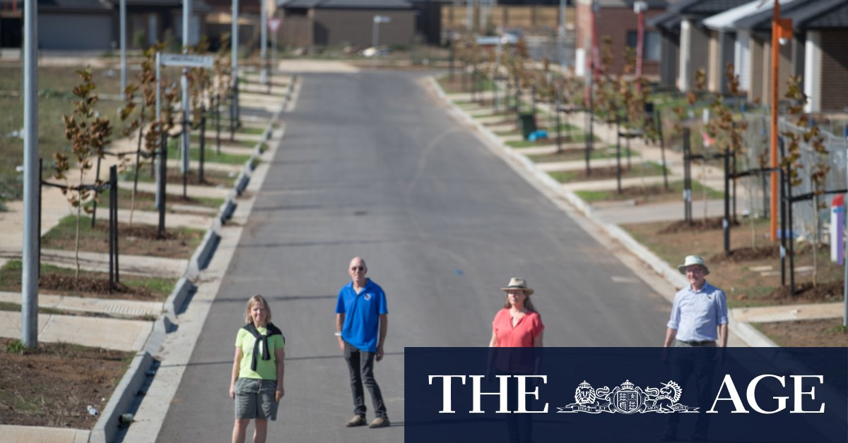 Treeless pain leaves city's western suburbs hot, dry and dusty