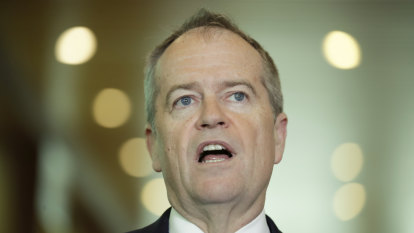 I misread franking credits, says Shorten of election loss