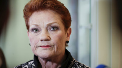 Hanson a terrible choice for deputy chair of family law inquiry