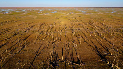 Contentious claim watered down in final Natural Resources Commission report