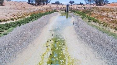 Lake Cawndilla, one of the Menindee Lakes, is now largely dry. (January 10, 2019.)