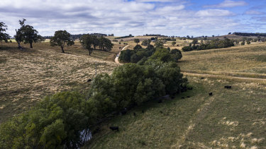 Site of a proposed gold mine near Blayney in the Central West region of NSW. Access to water could be key to its development.