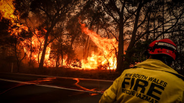 Bushfire victims say the rules for accessing HomeBuilder grants are too strict.
