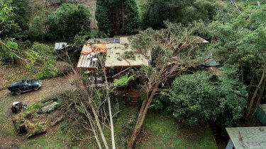 A damaged home in Kalorama after five trees crashed into it during this month's storm.