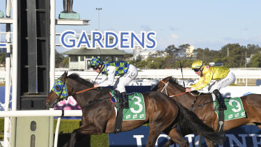 Prime Candidate scores a contentious victory at Rosehill last Saturday.