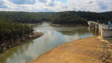 Ash from bushfires has been washed into the Warragamba Dam, prompting authorities to use alternative water sources.