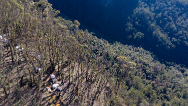 National Parks and Wildlife Service staff work metres from the cliff edge of Govetts Leap.