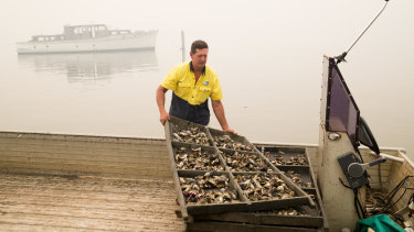 "Mr Alford has farmed oysters on the Hawkesbury for 23 years. ""A good 15 to 16 years of that"" were spent in disease."