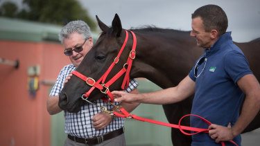 Mystic Journey will grab the focus at Caulfield on Saturday.