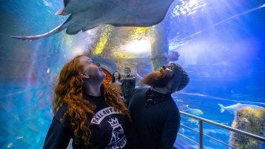 Sarah Noonan and Alister Winkel, from Traralgon, visiting the Sea Life aquarium in the city.