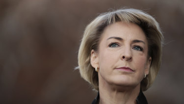 Small Business Minister Michaelia Cash is under pressure on franchising.