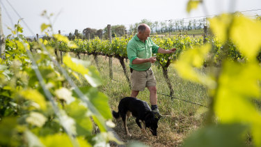 See Saw Wines owner Justin Jarrett is re-orienting some of his vineyards to protect them from the afternoon sun.