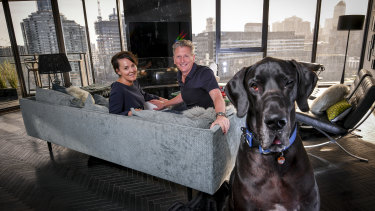 Welcome to my pad: He's a big unit, but Wallace the Great Dane is the perfect inner-city apartment pet, say his owners Rebecca and Stephen Edwards, of Docklands.