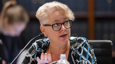 Labor MP Penny Sharpe has previously said destructive internal tactics only serve to harm the party's chances of election victory.