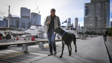 """""""Is that a horse?"""" It's the most common question that passersby ask Stephen Edwards of his Great Dane dog Wallace, pictured walking near their Docklands apartment block."""