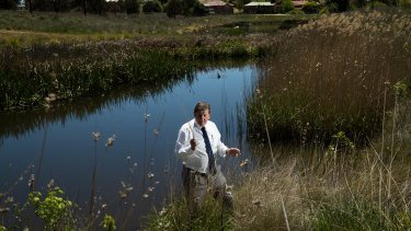 Orange mayor Reg Kidd at the Ploughman's Creek Wetlands, a constructed wetland that acts as the kidneys of the city.