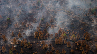 Aerial view of peatland and forest fires in Central Kalimantan on Saturday.