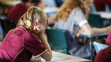 NAPLAN results under the spotlight again.