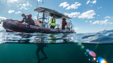 Rangers doing underwater surveying work to measure the impact of climate change atCape Howe.