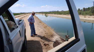 """Paul """"Paco"""" Ollerton and his dog look towards the canal system that delivers Colorado River water to his farm near Casa Grande, Arizona."""