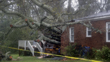 A fallen tree is shown after it crashed through the home where a woman and her baby were killed in Wilmington, NC.