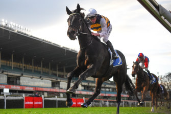 Harbour Views failed to live up to expectations at Caulfield on Saturday.