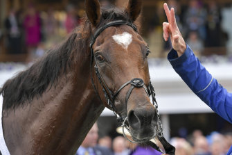 Cross Counter is bound for Royal Ascot.