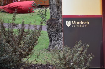 Murdoch University was investigated by TEQSA over breaches to English literacy standards required of foreign students.