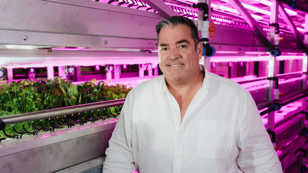 How an automated farm is stopping produce going out of season