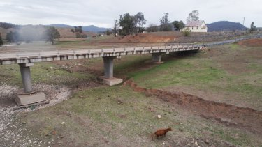 Green shoots, but not much else, along the Pages River at Gundy in the Upper Hunter Valley.