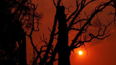 Smoke haze was seen as bushfires burned in Yamba on Monday.