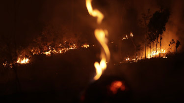 A fire burns in highway margins in the city of Porto Velho, Rondonia state, part of Brazil's Amazon.