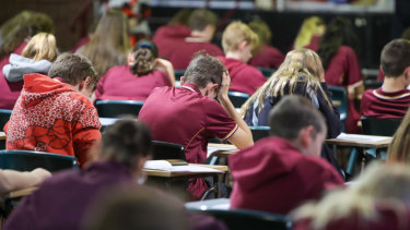 Australia publishes more test data online than any similar country, a new review has found.