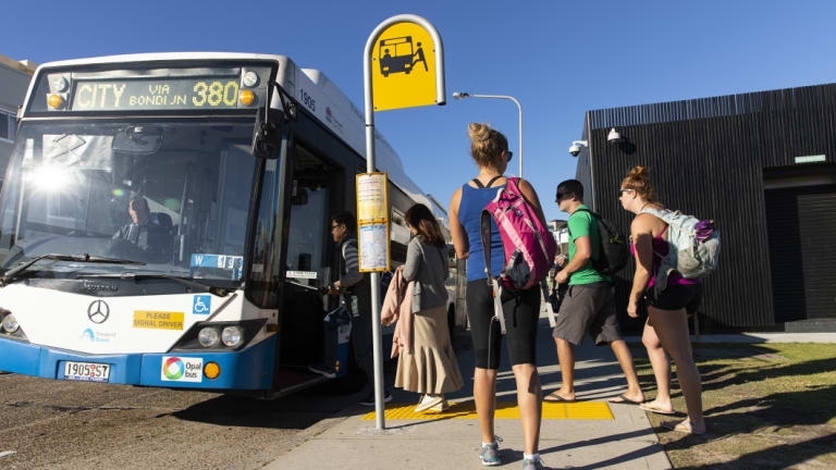 The new services are expected to be in areas including Bondi, Parramatta, Strathfield and Randwick.