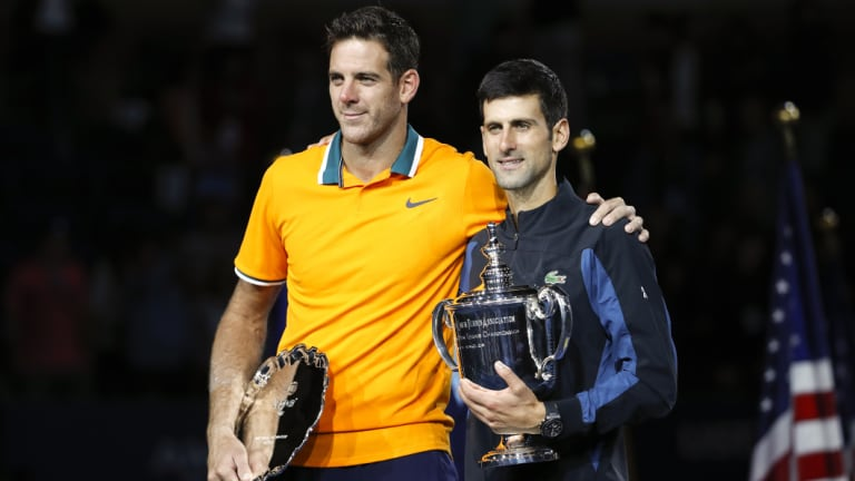 Celebration: He will improve to No.3 in the rankings, but there is little doubt Novak Djokovic (right) is back on top.