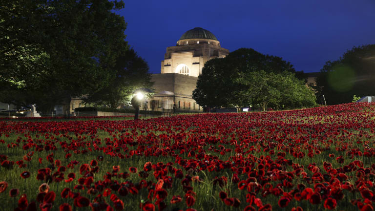 An installation of 62,000 poppies to mark the centenary of the end of the First World War, at the Australian War Memorial.