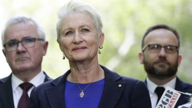 Kerryn Phelps was at the City of Sydney council meeting on Monday night, after she met with crossbench MPs in Canberra last week.