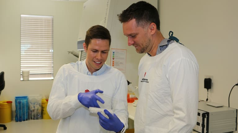 Queensland research breakthrough to treat muscle disease, slow ageing