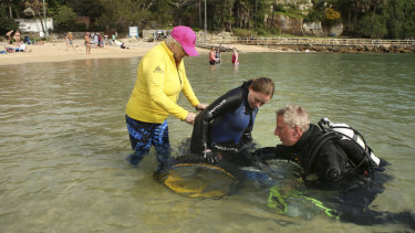 Ashlee Florrimell is assisted from the water into a beach wheelchair after a dive at Shelly Beach in Manly.