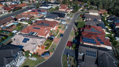 Rooftop solar and large scale renewables grow despite COVID challenge