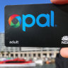 Cost to taxpayers of Opal cardholders dodging fares hits $10m