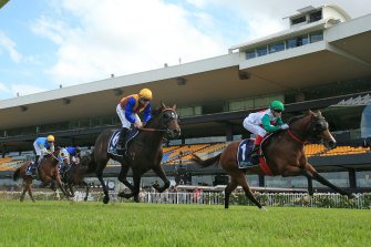 Castelvecchio takes out the group 1 Rosehill Guineas in front of an empty grandstand.