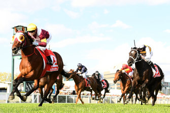 Jockey Craig Williams and Fierce Impact win the Toorak Handicap.