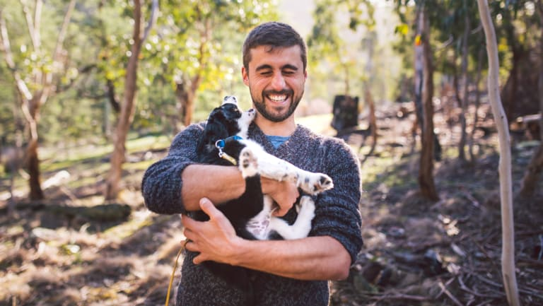 Researcher Dr Dejan Stojanovic will help train puppy Zorro in masked owl detection.