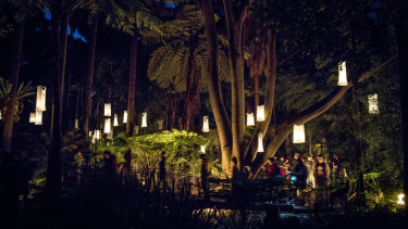 People walk through the fern gully with its singlet lanterns.