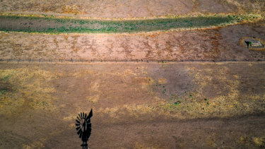 A windmill casts a shadow on a drought-affected paddock on a property on the Liverpool Plains in NSW.