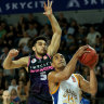 Brisbane Bullets lose veteran forward in NZ Breakers defeat